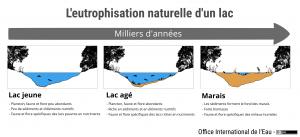 L'eutrophisation naturelle d'un lac