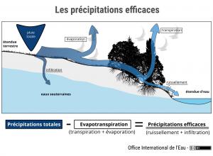 Les précipitations efficaces
