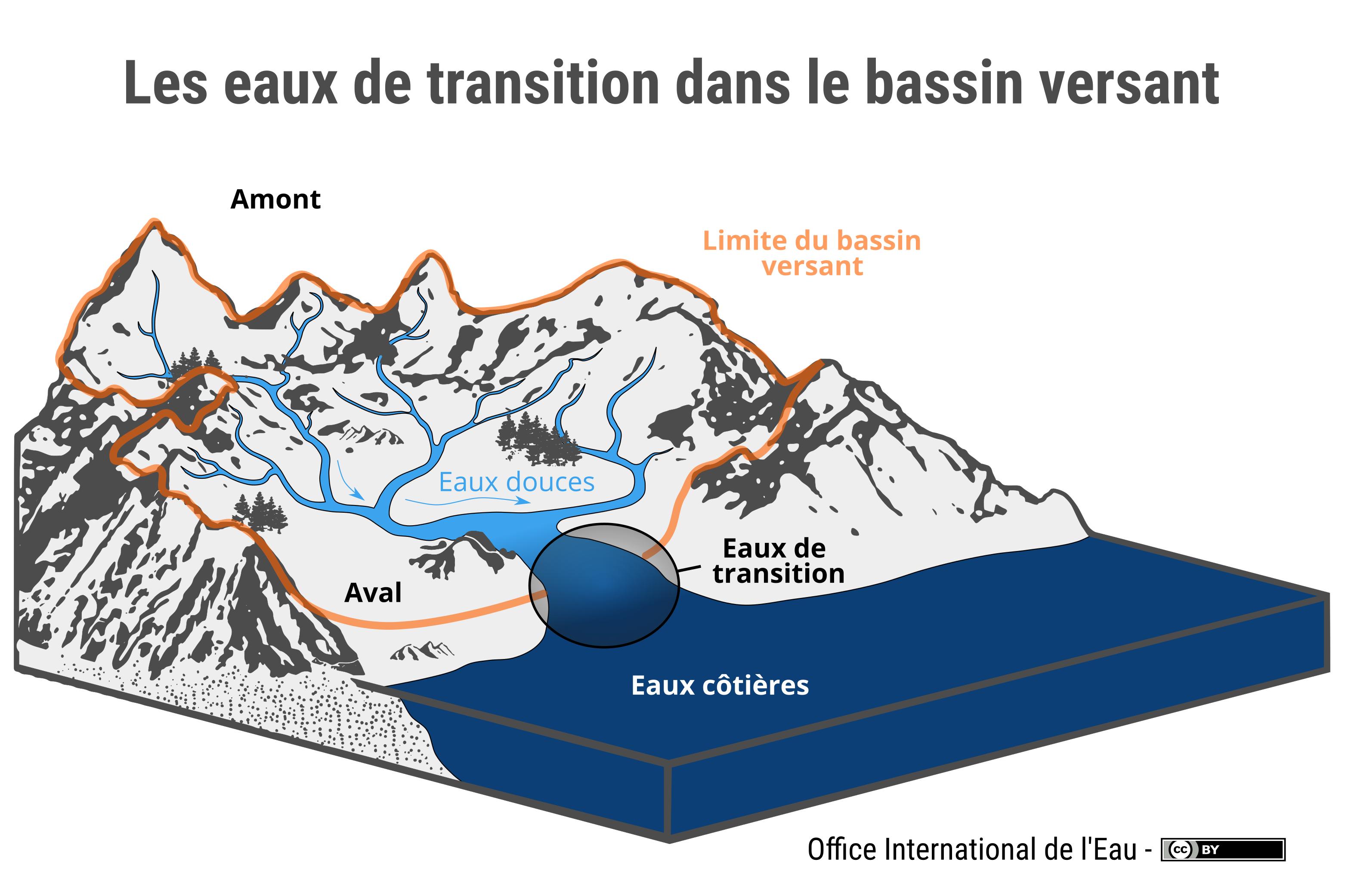 Les eaux de transition dans le bassin versant office - Office national de l eau et des milieux aquatiques ...