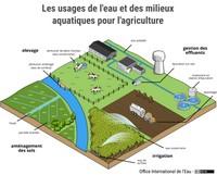 Les usages de l'eau et des milieux aquatiques pour l'agriculture
