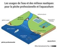 Les usages de l'eau et des milieux nautiques pour la pêche professionelle et l'aquaculture