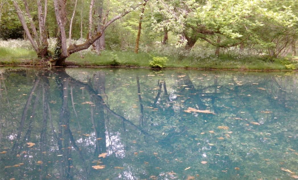 Fontaines bleues du Domaine de Beaulon