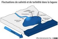 Fluctuations de salinité et de turbidité dans la lagune