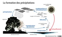 La formation des précipitations