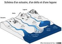 Schéma d'un estuaire, d'un delta et d'une lagune