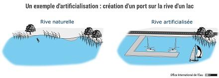 Schéma d'un exemple d'artificialisation des milieux aquatiques : création d'un port sur la rive d'un lac