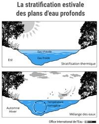 La stratification estivale des plans d'eau profonds