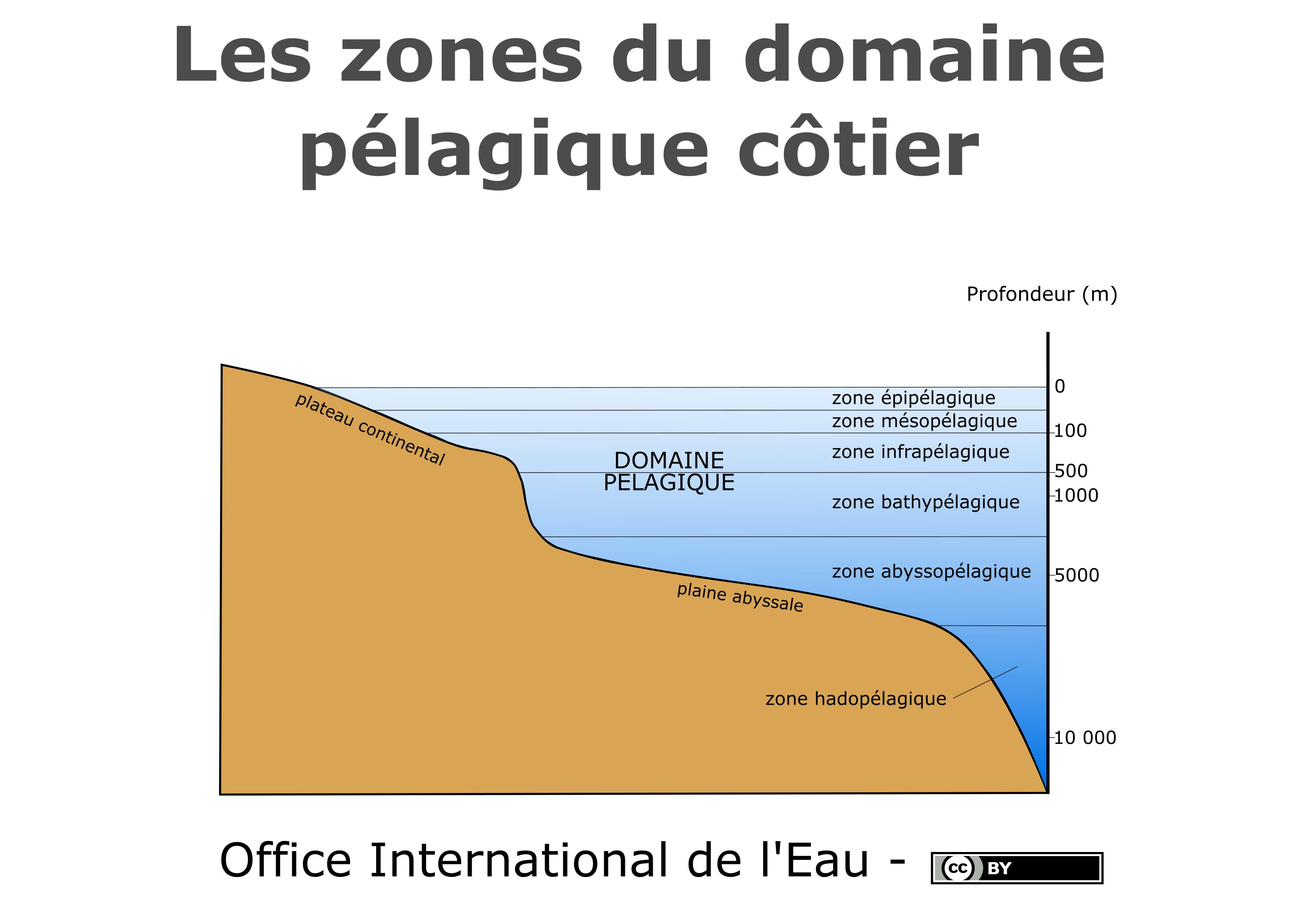 Les zones du domaine pélagique océanique