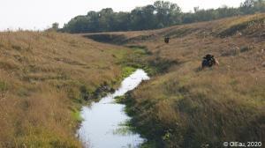 Prairie - Moldavie
