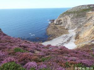 Petite plage bretonne