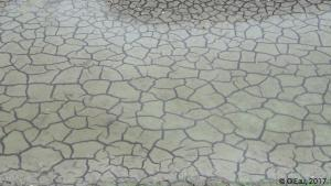Terre craquelée canal ostréicole