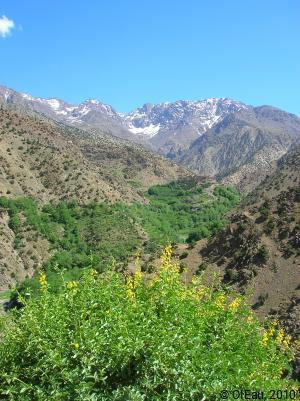 MAROC - montagne vallée aride