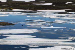 Fonte du glacier