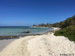 Littoral - Îlot Signal Nouvelle Calédonie