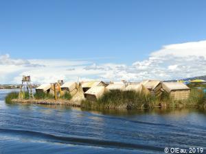Ile flottante de roseaux - indiens Uros