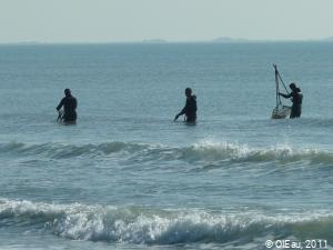 Camargue pêche à pied