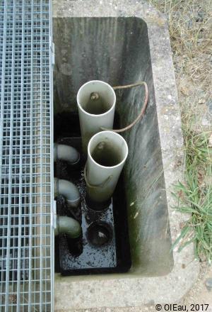 Filtres plantes _ Repartition des bachées